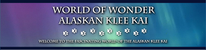World of Wonder Alaskan Klee Kai Banner